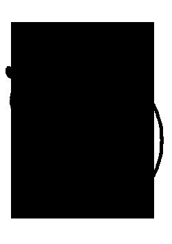 Réflexologie plantaire - Muriel MAZY