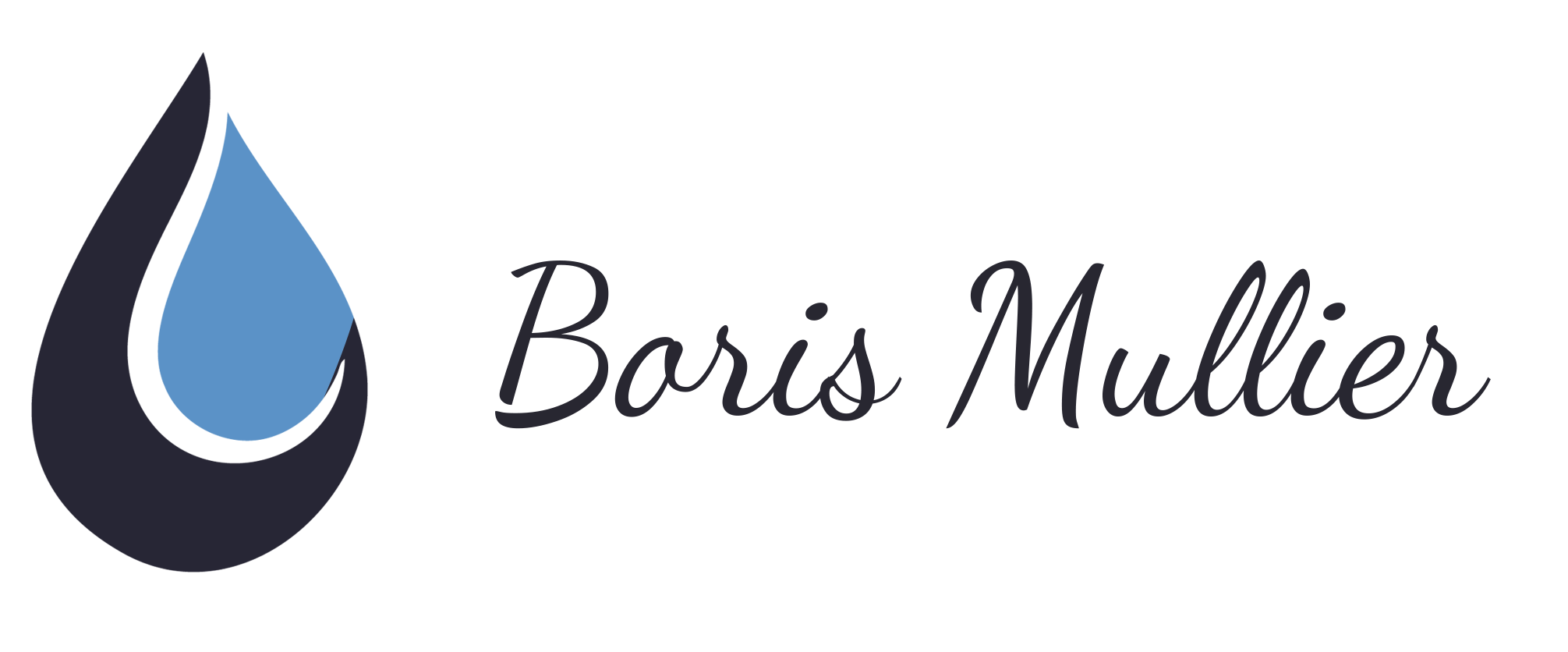Boris Mullier - Plombier/Chauffagiste à Mardeuil