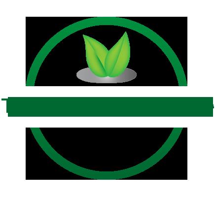 Techniques Élagages Mulhouse