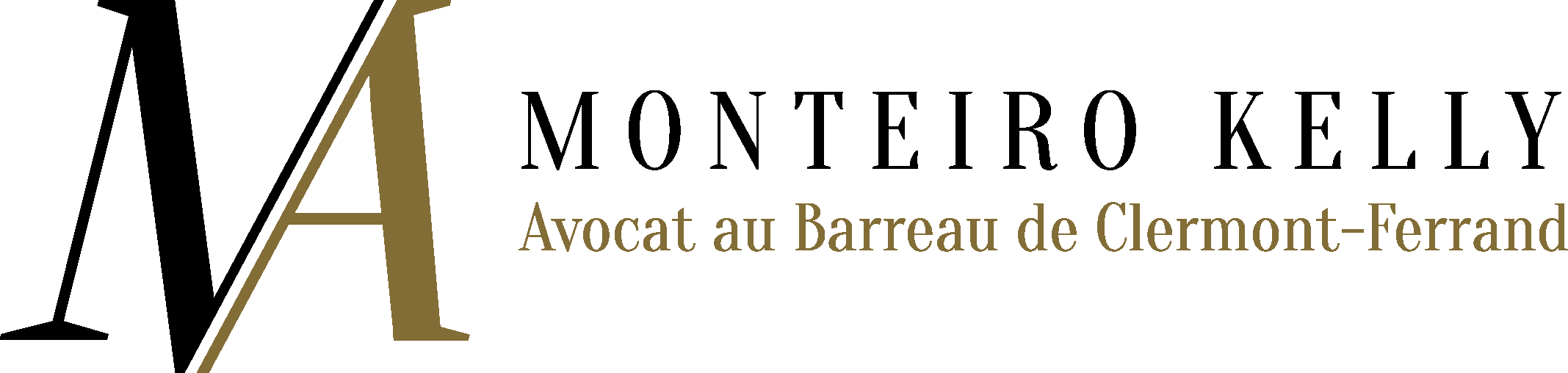 Avocat au Barreau de Vienne
