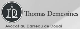 Avocat Droit du Travail - Thomas Demessines